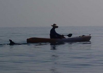 Sabal_Beach_Belize_Dolphin_Kayak