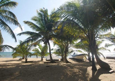 Sabal_Beach_Belize_Entrance