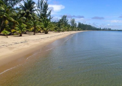 Sabal_Beach_View_North