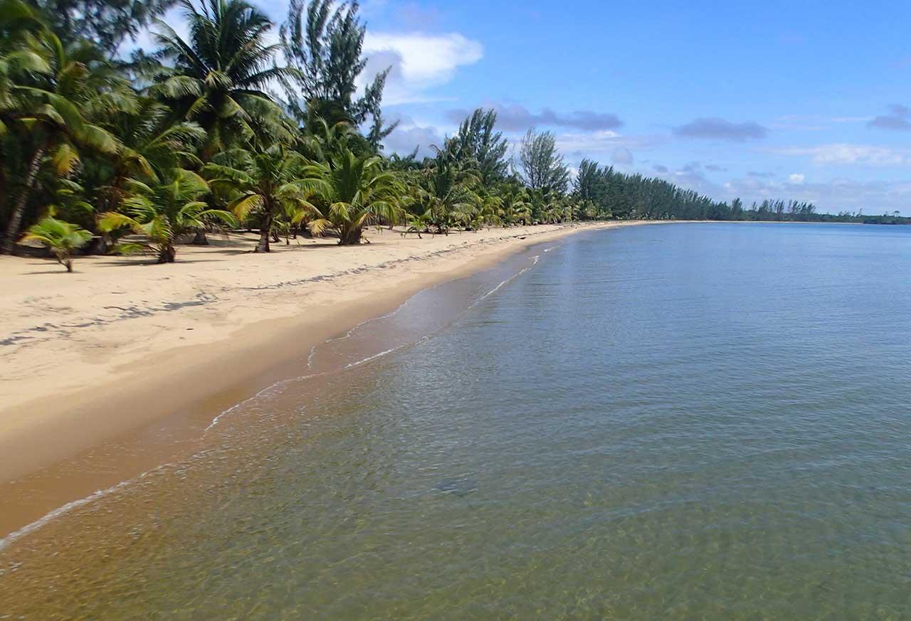 Sabal Beach View North