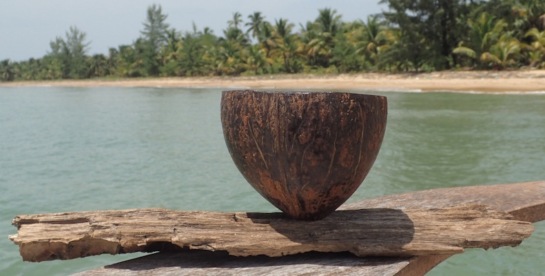 Joelle's Coconut Planter