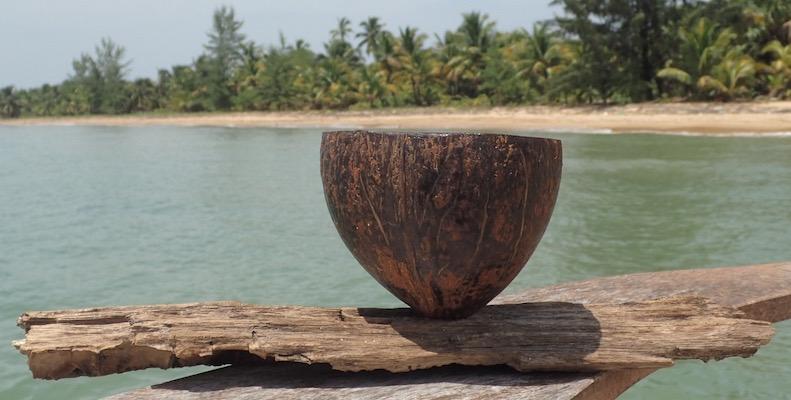 Joelle's Coconut Planter